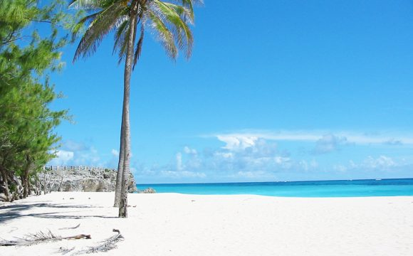 Barbados Booming as Year of Wellness and Soft Adventure Beckons