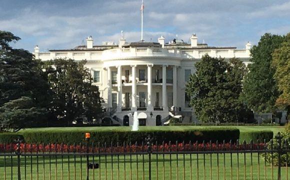 #NInja Review: Washington DC, USA