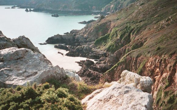 Wildlife Sightings on The Islands of Guernsey