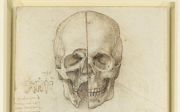 Leonardo da Vinci Exhibition Heads for Ulster Museum