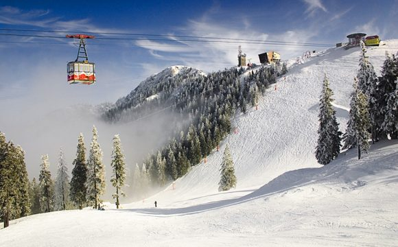 Local Tour Operator Adds Additional Ski Seats for February!