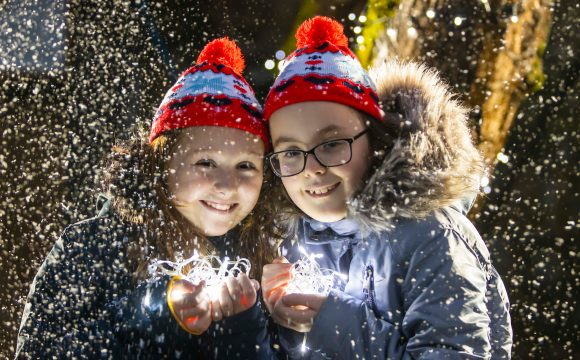Mount Congreve Celebrates 'Woodland Lights' & Visitor Number Increase through 2019