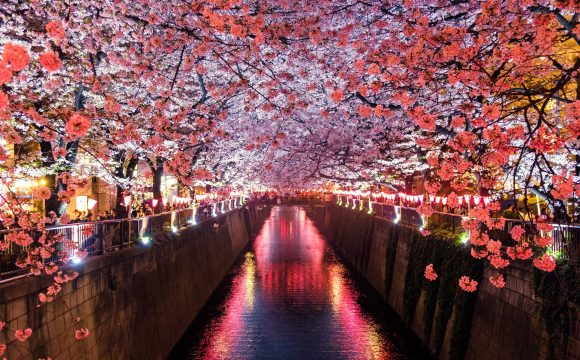 Japan's Timeless Stories Are Waiting For You