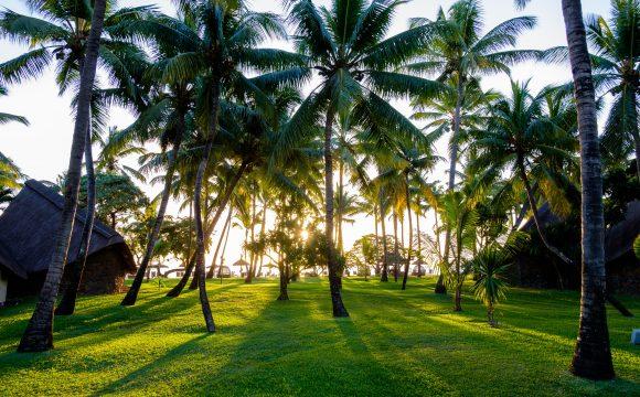 WTTC Recognises Mauritius as a Safe Destination