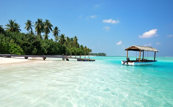 Delights of the Maldives