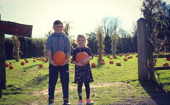 Sink Your Teeth into Some Frighteningly Fun Activities this Halloween